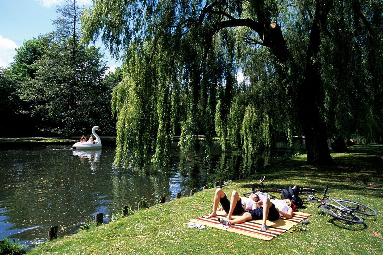 Munke Mose Park, Odense