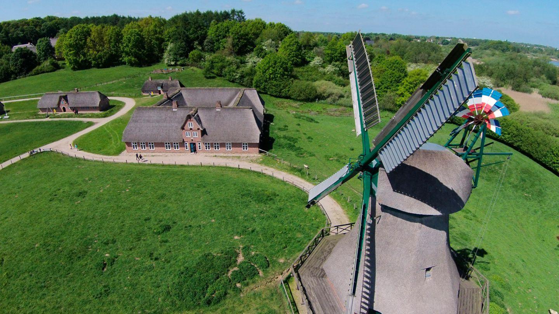 Frelichtmuseum Molfsee
