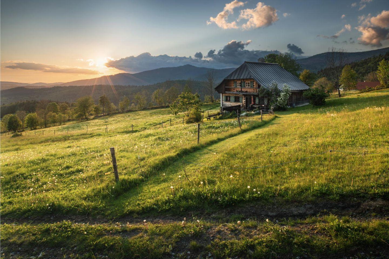 Deutscher Nationalpark: Der Bayerische Wald: wild, vielschichtig und schön - Bild 6