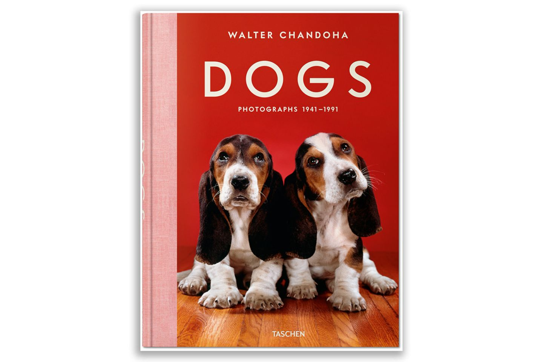 DOGS - Walter Chandoha