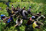Umweltfotografie: Kraftvolle Bilder über den Zustand unserer Erde - Bild 5