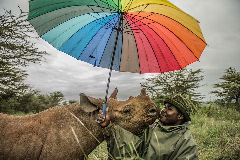 Umweltfotografie: Kraftvolle Bilder über den Zustand unserer Erde - Bild 12