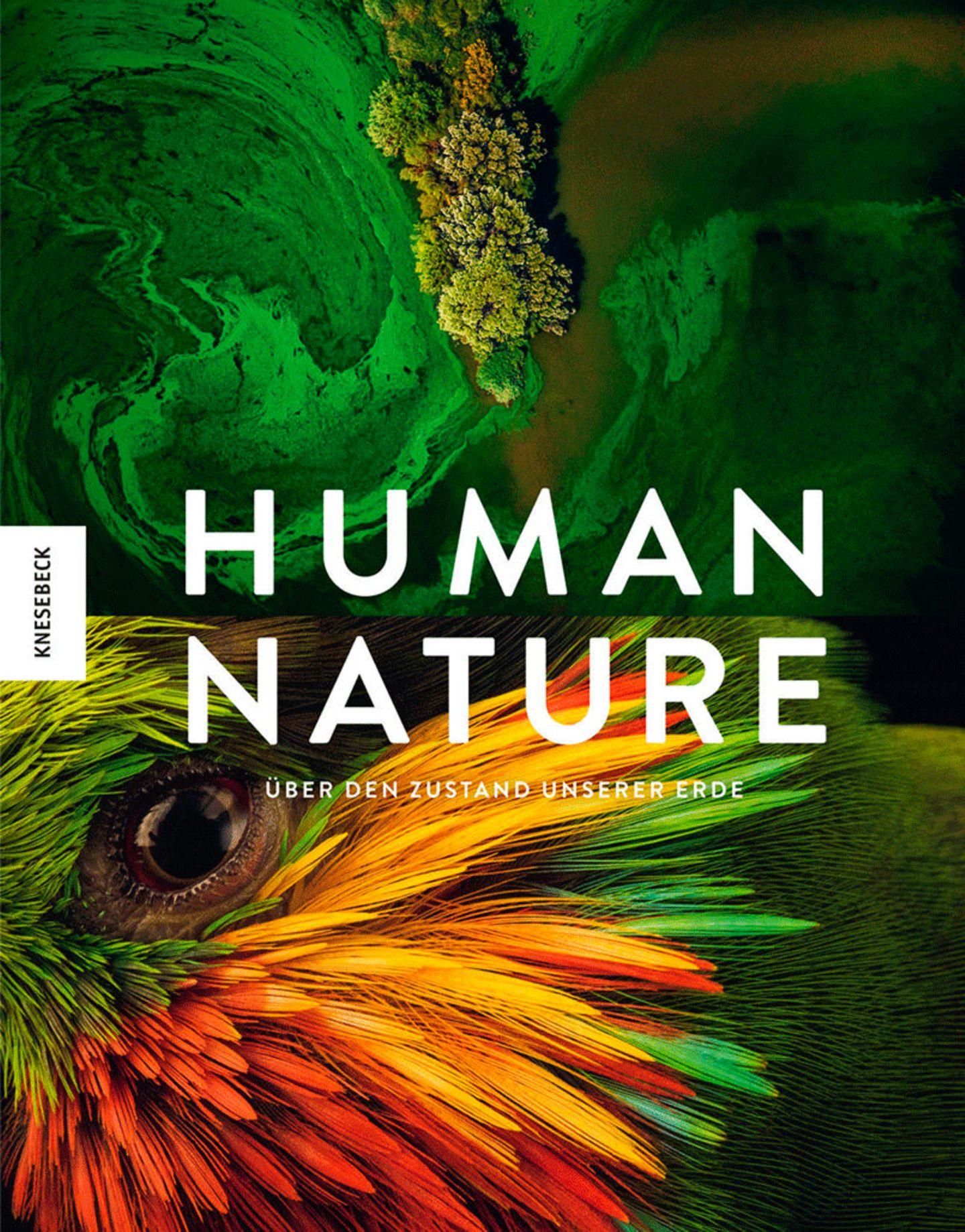 Umweltfotografie: Kraftvolle Bilder über den Zustand unserer Erde - Bild 13