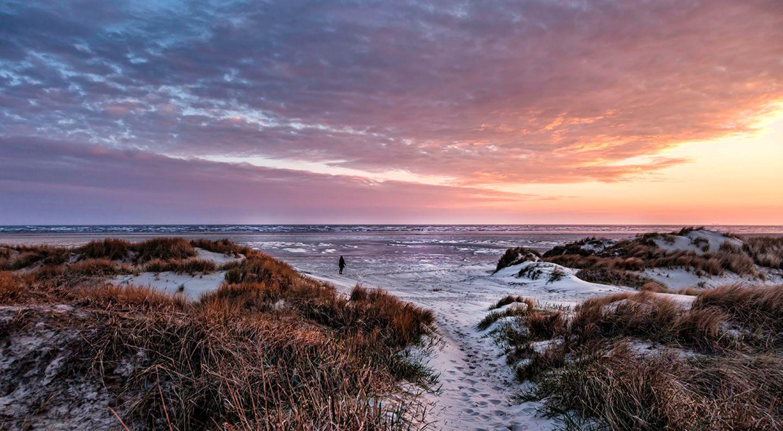 Nationalpark Vadehavet: Besuch im dänischen Wattenmeer