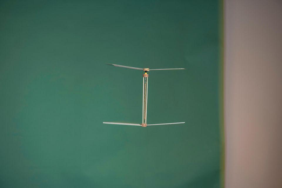 Basteltipp: Ein Helikopter für Zuhause