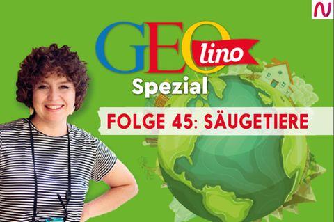 GEOlino Spezial - der Wissenspodcast: Folge 45: Säugetiere