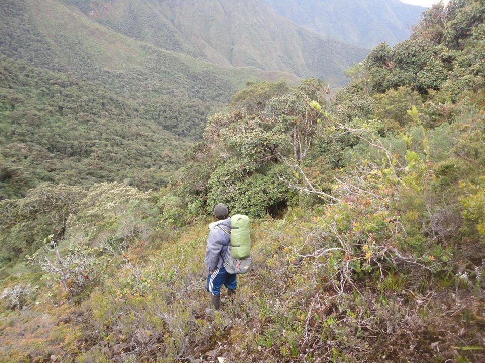 Blick auf das Waldschutzgebiet oberhalb der Gemeinde Irubí