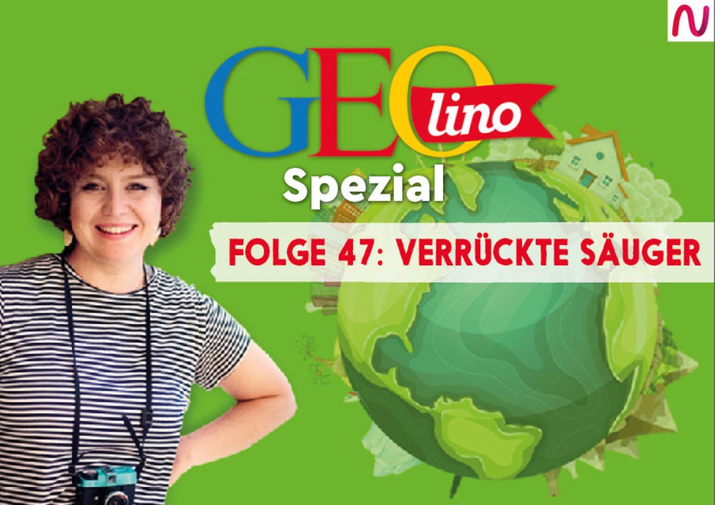 GEOlino Spezial - der Wissenspodcast: Folge 47: Verrückte Säuger
