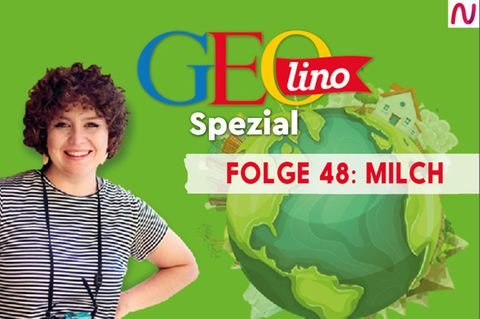 GEOlino Spezial - der Wissenspodcast: Folge 48: Milch