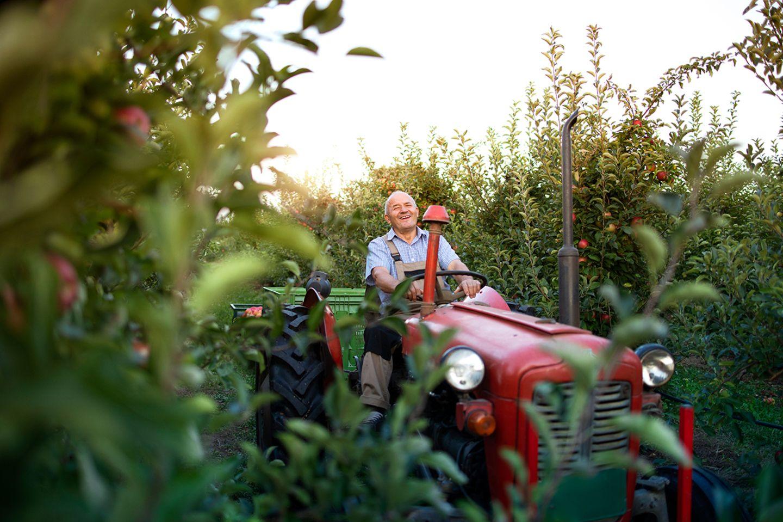 Obstbauer im Alten Land