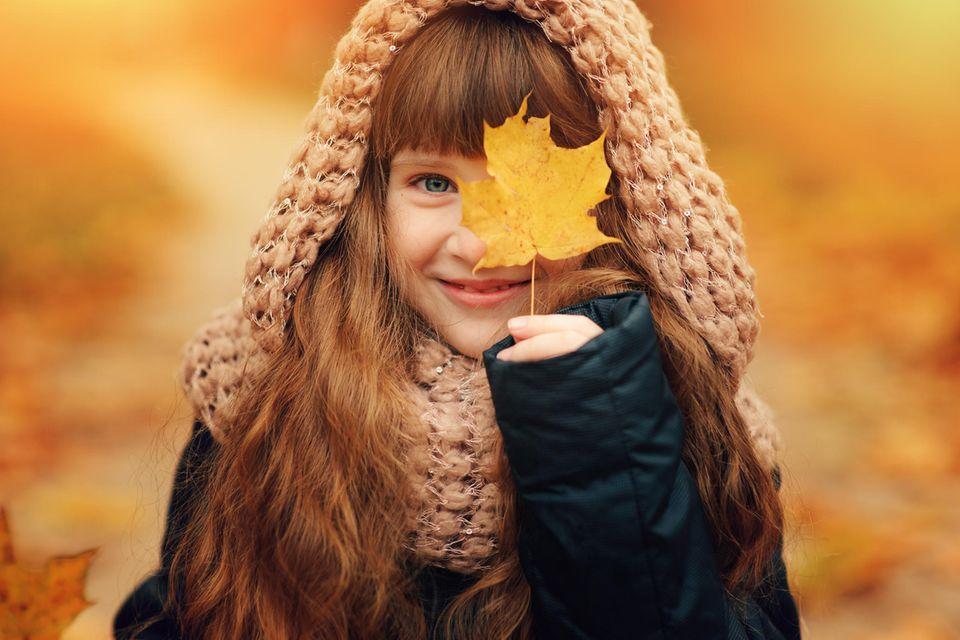 Tipps: Im Herbst färben Laubbäume ihre Blätter gelb und rot, bis sie diese schließlich abwerfen.