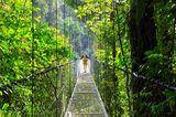 Dschungel in Costa Rica
