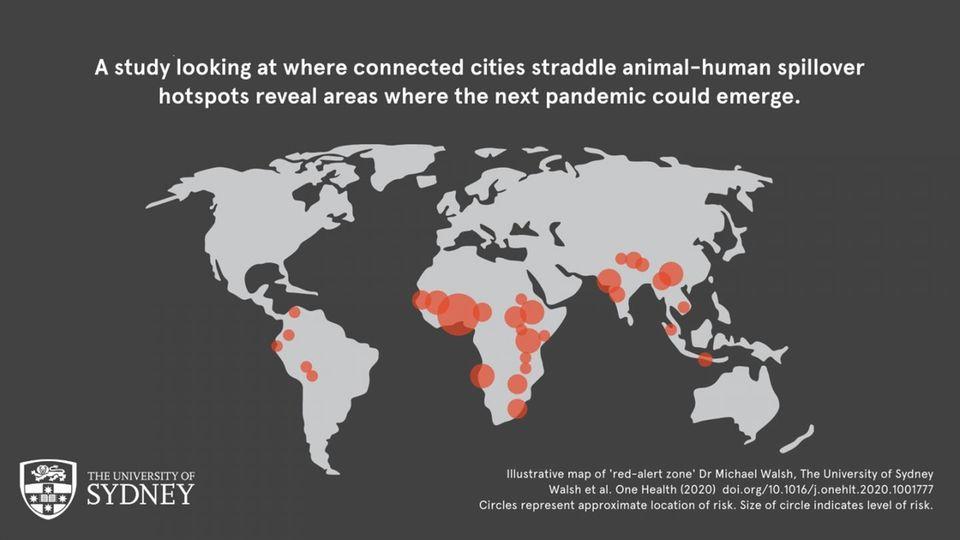 Karte: Pandemie-Risiko weltweit