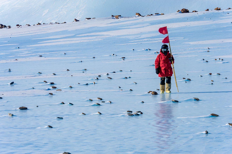 """Meteoriten: Alexander Gerst unterwegs mit den """"Hells Angels der Antarktis"""" - Bild 5"""