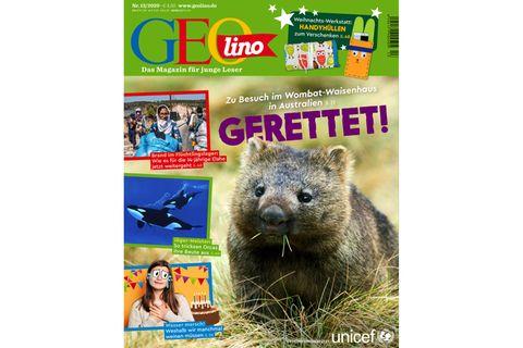 GEOlino Nr. 13/2020: Gerettet! Zu Besuch im Wombat-Waisenhaus in Australien