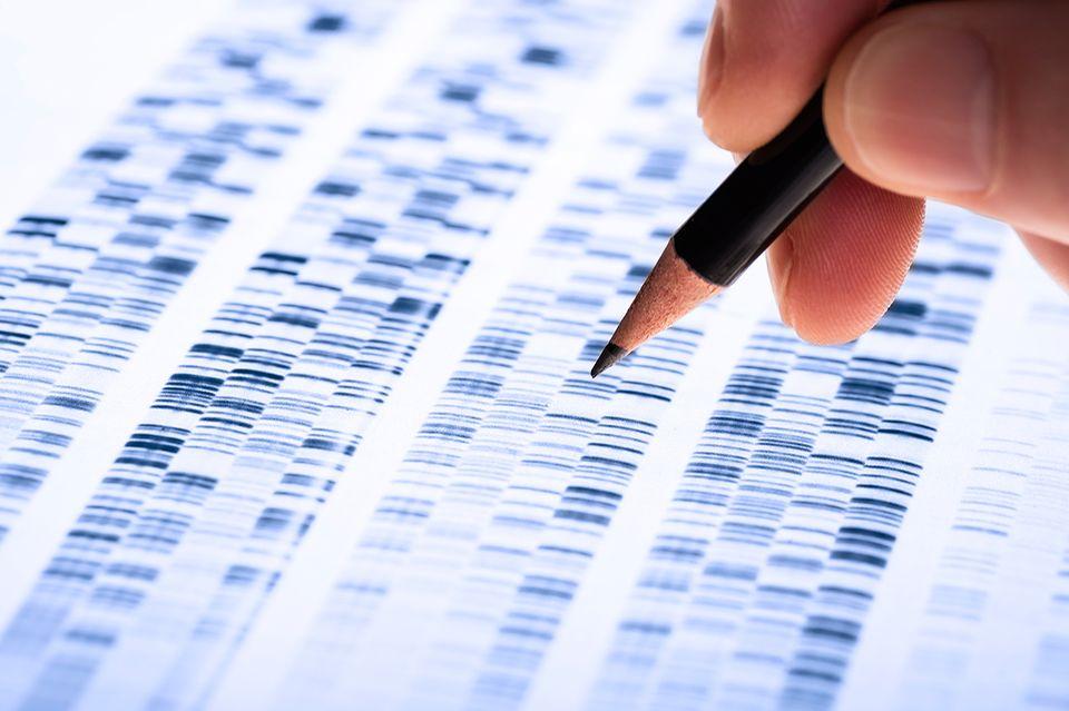 DNS-Analyse