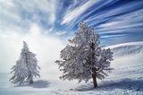 Winterstimmung auf der Rigi