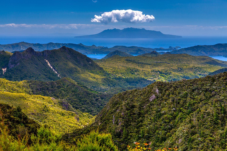 Great Barrier Island, Neuseeland