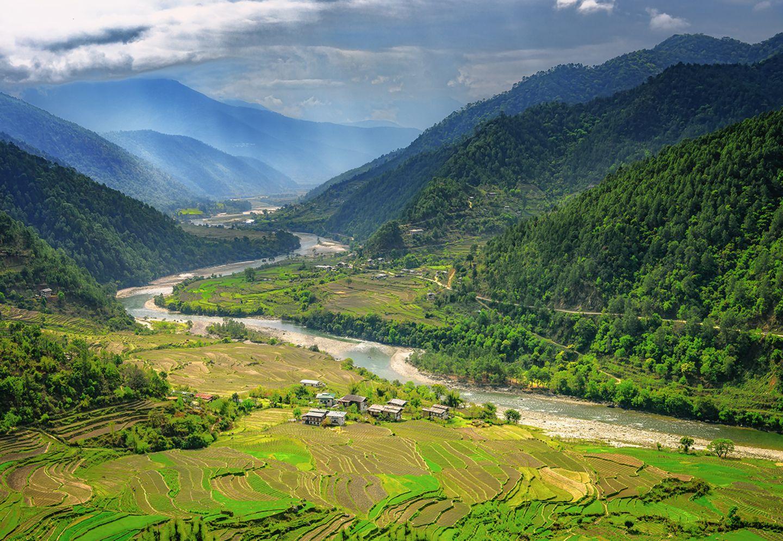 Reisfelder und Häuser im Punakha-Tal, Bhutan