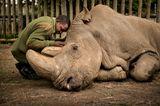 Ami Vitale/ Wildlife Photographer of the Year