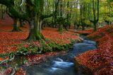Naturpark Gorbeia, Spanien