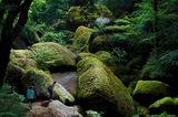 Der Wald von Huelgoat, Frankreich