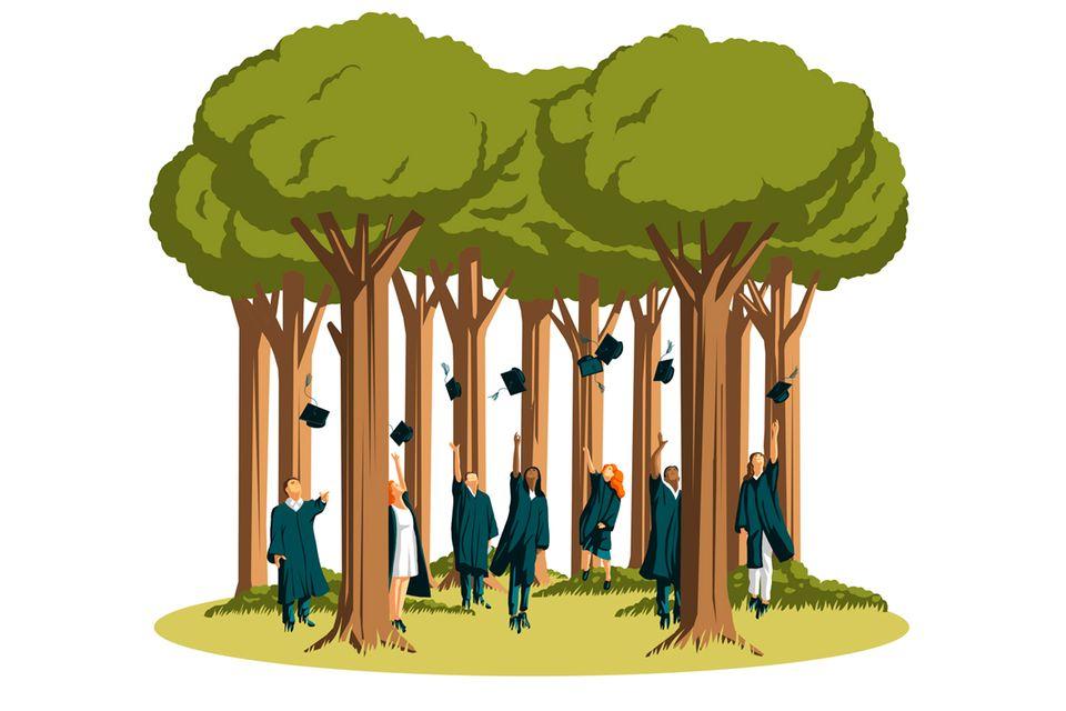 Ökologische Waldbewirtschaftung