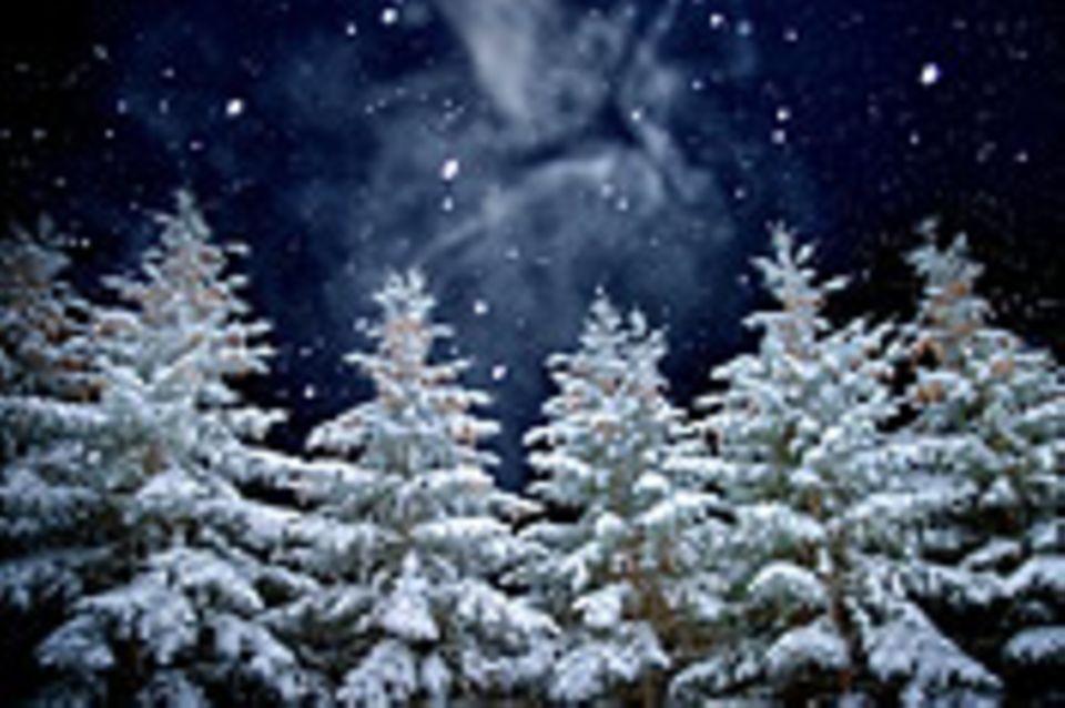 Schiebepuzzle: Nr. 57: Geist der diesjährigen Weihnachtsnacht