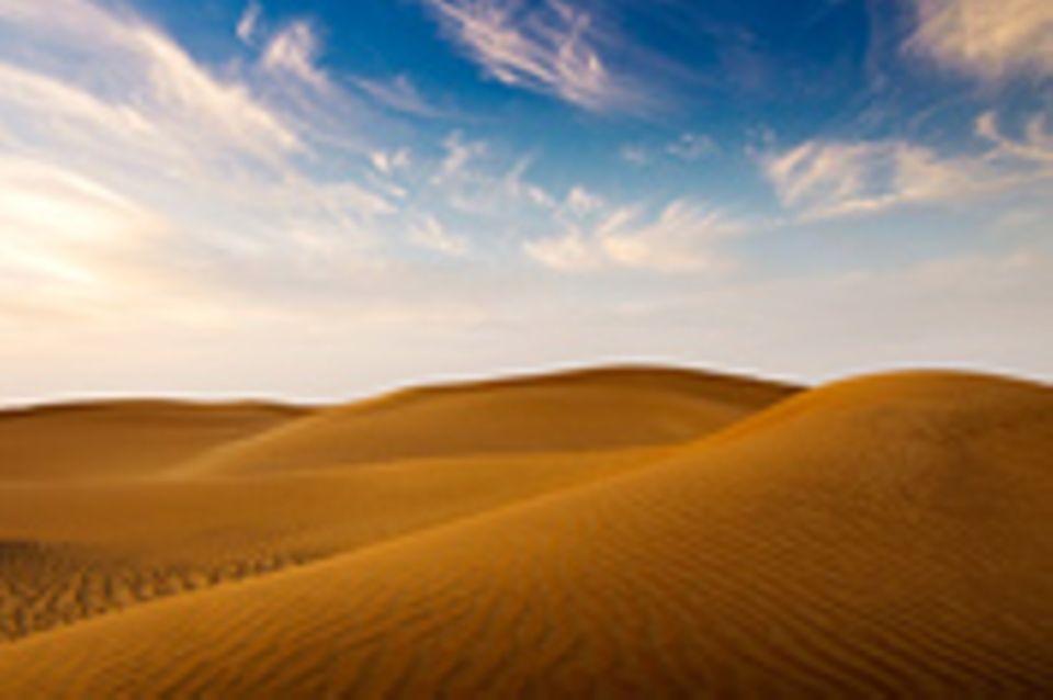 Schiebepuzzle: Nr. 73: Wüste