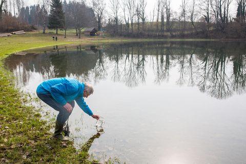 Hartmut Heise steht im Eichener See und fischt Urzeitkrebse vom Grund. Der Eichener See entsteht, wenn aufgrund von starken Regenfällen oder Schneeschmelze der Grundwasserspiegel so weit ansteigt, dass Wasser an die Oberfläche tritt