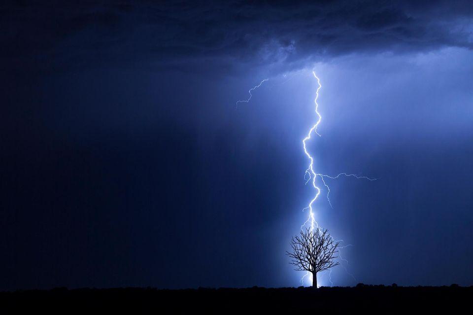 Ein Blitz schlägt in einen Baum ein
