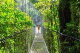 Frau schreitet über eine Hängebrücke im Urwald Costa Ricas