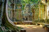 Ta Prohm Tempel im Morgenlicht. Teil des Angkor Wat Komplexes