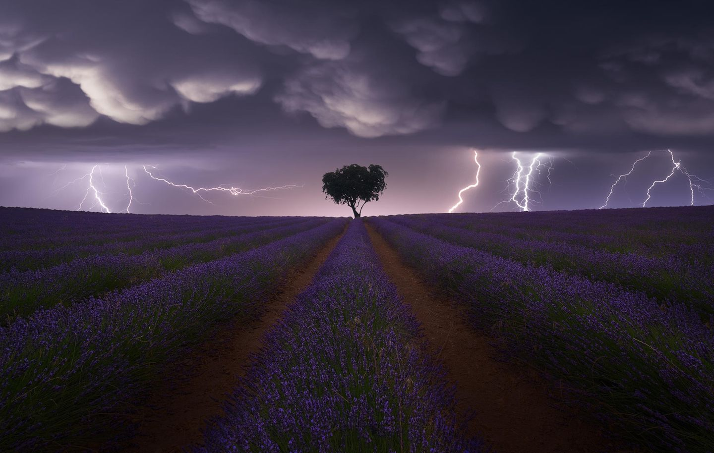 Juan López Ruiz, Spain, Category Winner, Open, Landscape, 2021 Sony World Photography Awards