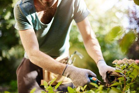 Gärtner bei der Arbeit