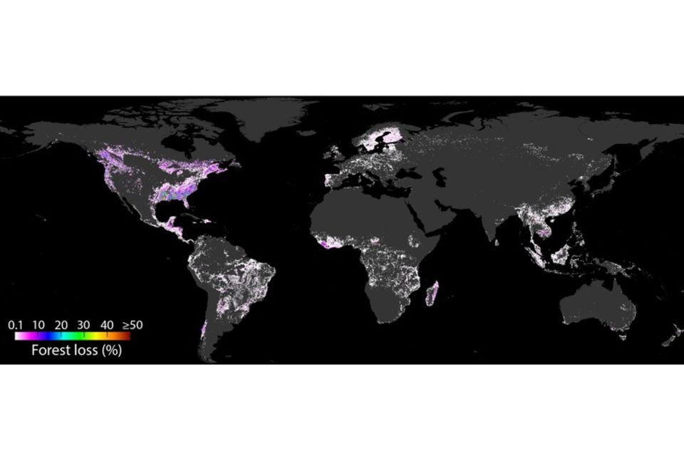 Karte zur Waldzerstörung von 2001 bis 2015