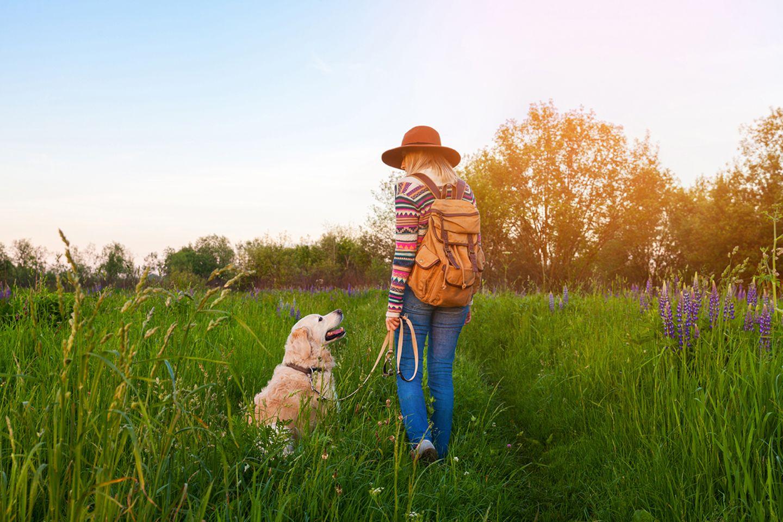 Hunde gehören in Naturschutzgebieten immer an die Leine