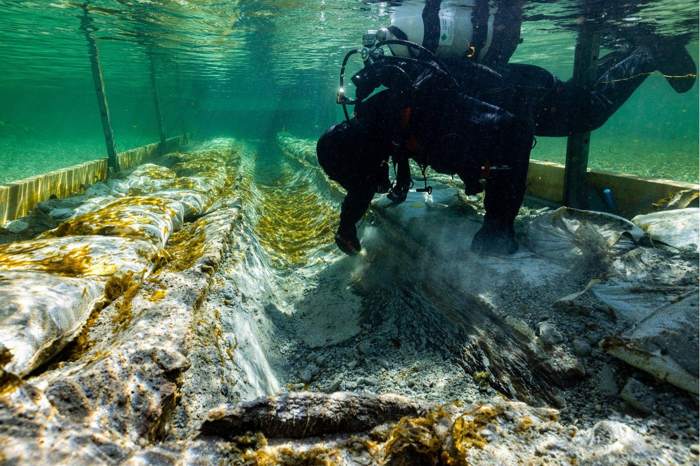 Das Ur-Boot im Bodensee wird von Tauchern geborgen