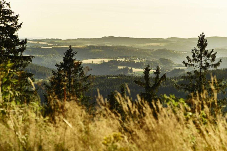 Blick auf die bewaldeten Hügel vom Aussichtspunkt des Frankenwaldsteigs