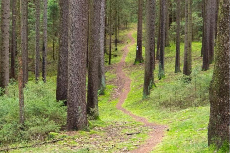 Wanderpfad durch den Frankenwald