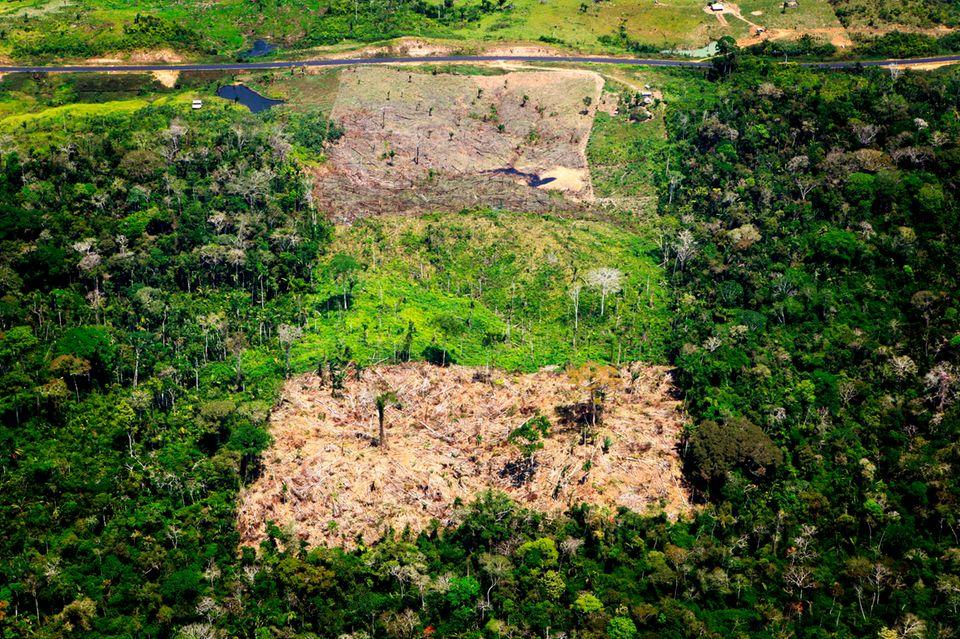 Luftaufnahme eines abgeholzten Gebiets im Amazonas-Regenwald in Acre, Brasilien. Für den Anbau von Soja, Kaffee und anderen Produkten für den Import in die EU ist zuletzt im Mittel jährlich Tropenwald auf einer Gesamtfläche von etwa der vierfachen Größe des Bodensees abgeholzt worden