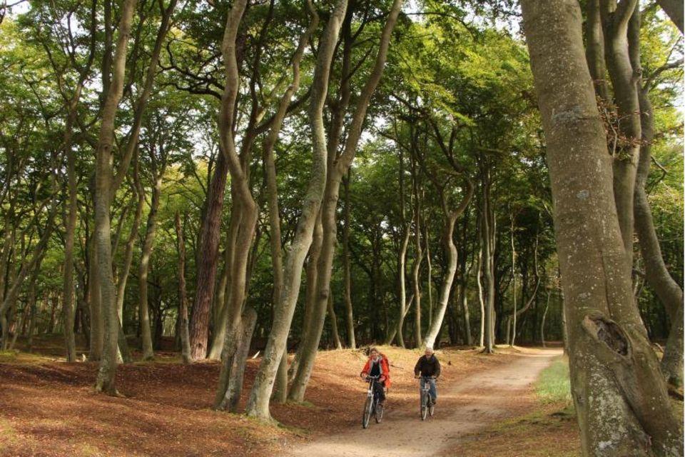 Fahrradfahrer im Wald nahe des Darßer Weststrands
