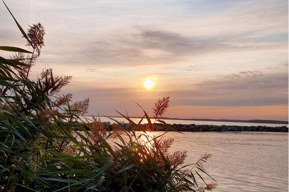 Abendstimmung auf der Insel Vilm