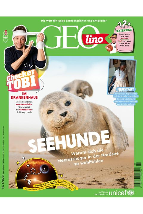 GEOlino Nr. 05/2021: Seehunde