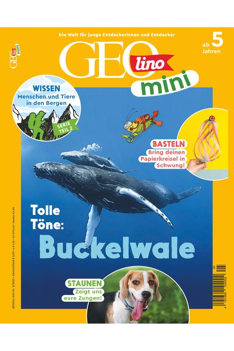 GEOlino Mini Nr. 05/2021: Tolle Töne - Buckelwale