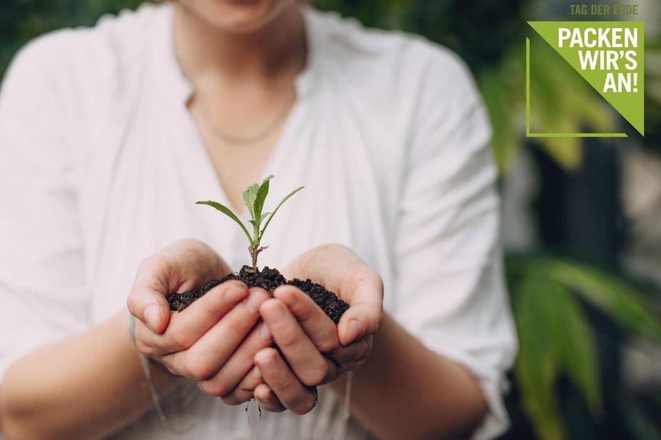 Nachhaltigkeit: Packen wir's an! - Die Inhalte zum Thementag