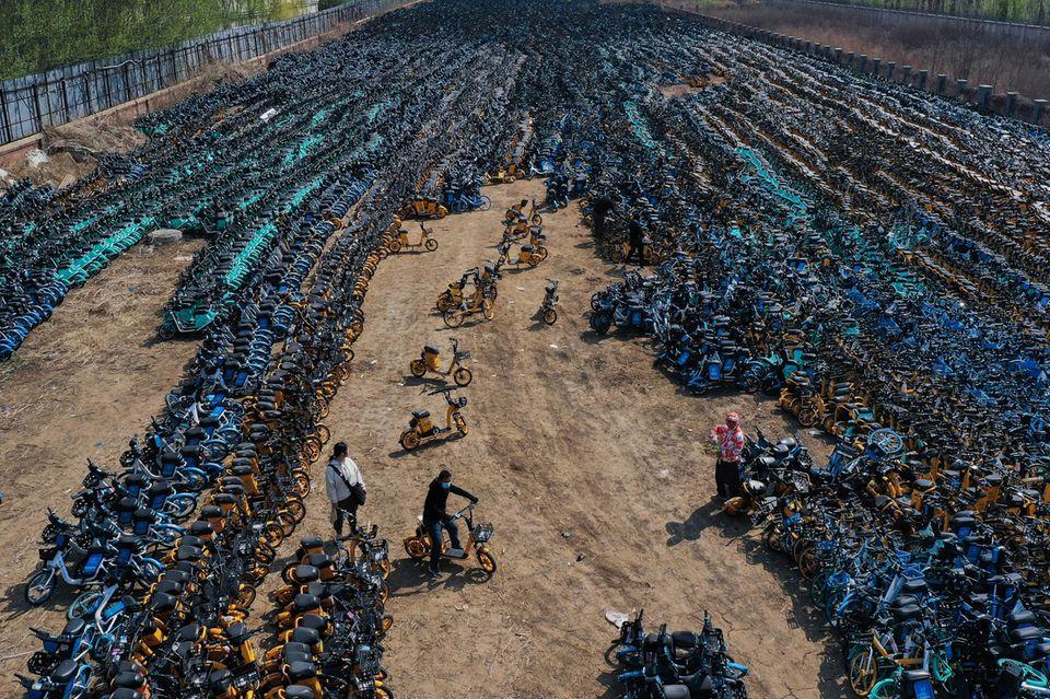 Fahrräder auf einem Fahrradfriedhof