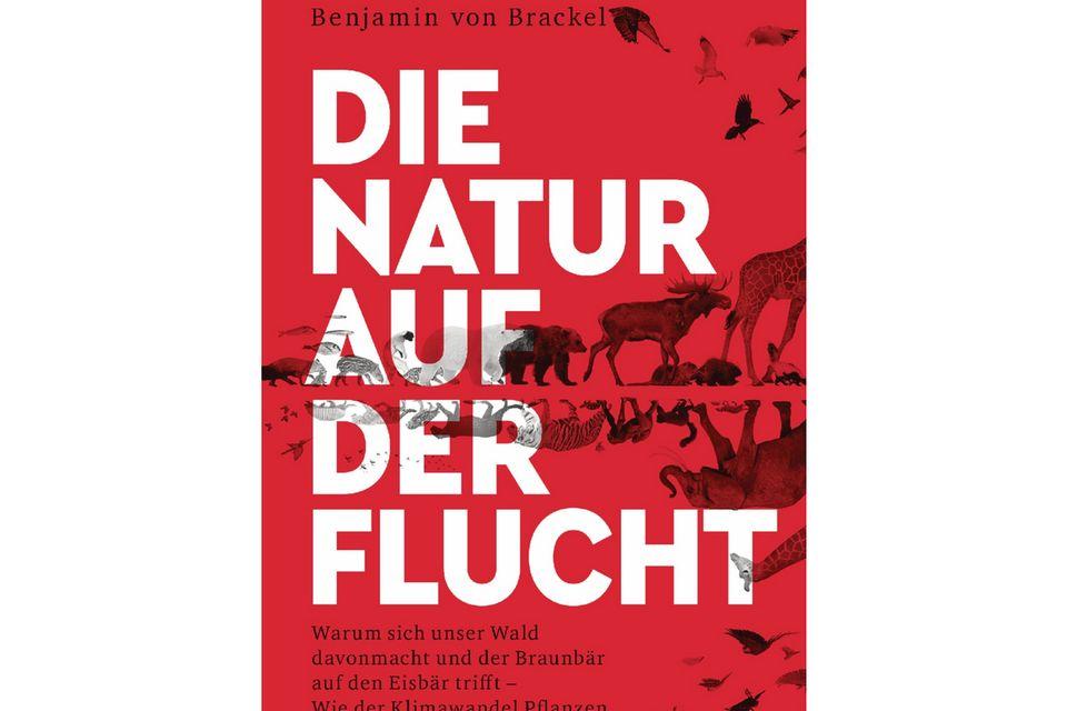 """""""Die Natur auf der Flucht"""" ist im April 2021 im Heyne-Verlag erschienen"""