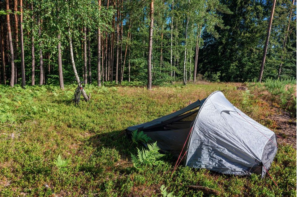 Wildcampen in Polen
