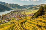 Weißenkirchen am Welterbesteig Wachau am sonnigen Herbsttag